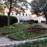 Park Brankovac 3